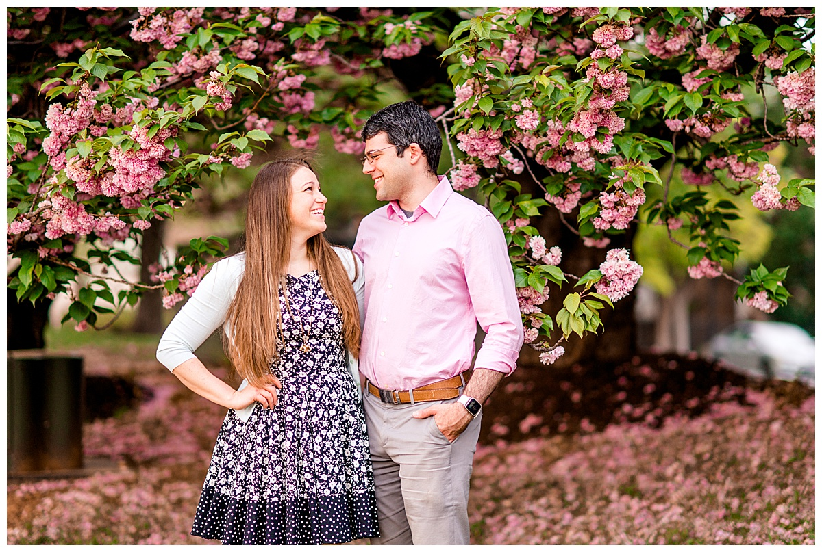 Cherry_Blossom_Columbia_MD_photographer-14.jpg