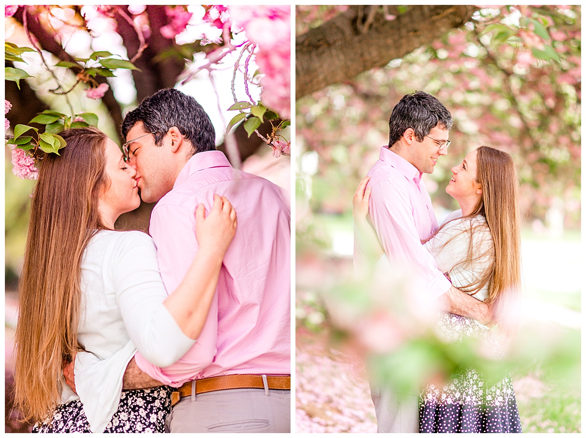 Cherry_Blossom_Columbia_MD_photographer-27.jpg