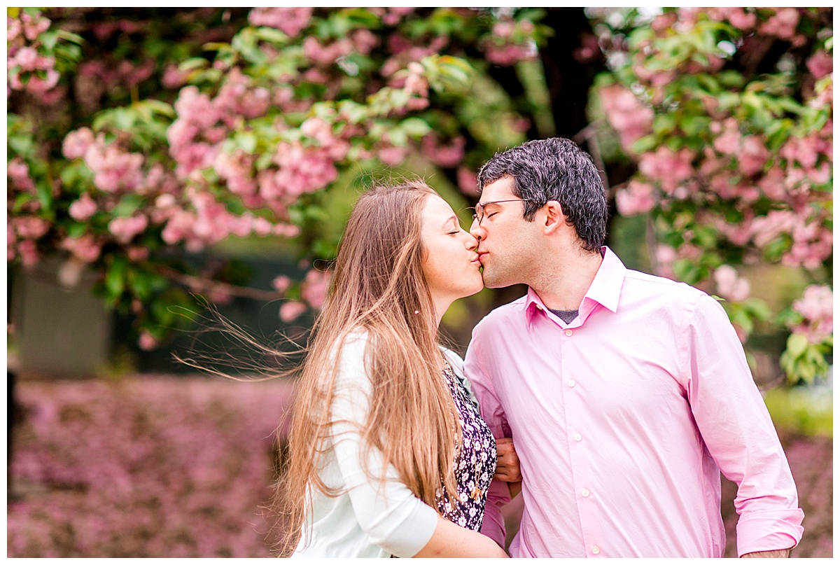 Cherry_Blossom_Columbia_MD_photographer-30.jpg