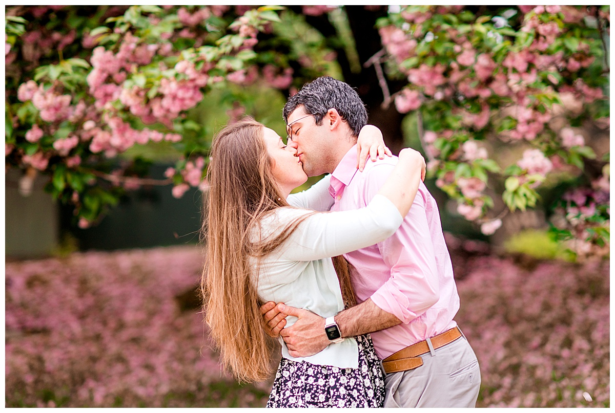 Cherry_Blossom_Columbia_MD_photographer-31.jpg