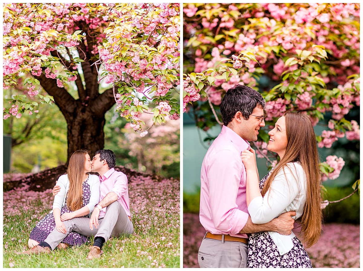 Cherry_Blossom_Columbia_MD_photographer-38.jpg