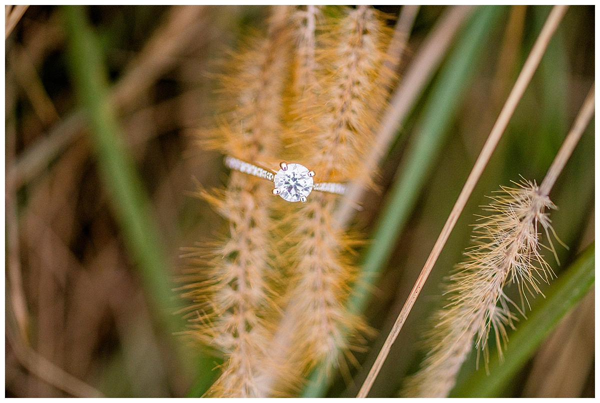 Howard_County_Conservancy_Engagement_Photographer-39.jpg