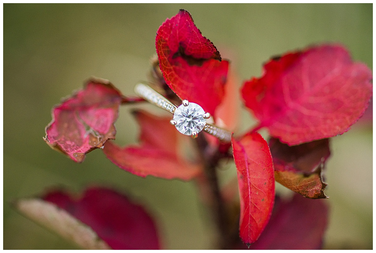 Howard_County_Conservancy_Engagement_Photographer-41.jpg